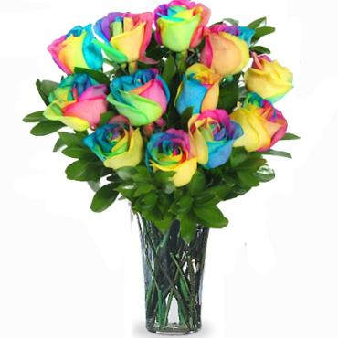 Rainbow Roses Dozen Vased