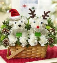 Santa and Reindeer Dogs