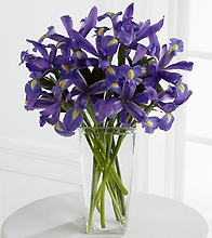 The Iris Riches™ Bouquet